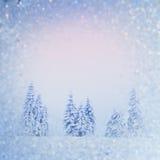 Magischer Winterschnee bedeckte Baum, Hintergrund mit irgendeinem weichem Hoch Lizenzfreie Stockfotografie