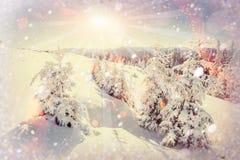 Magischer Winterschnee bedeckte Baum, Hintergrund mit irgendeinem weichem Hoch Lizenzfreies Stockfoto