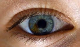 Magisches Auge mit zwei Farben Stockfotografie
