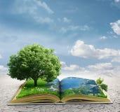 Magisches Buch Lizenzfreie Stockbilder