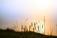 Magisches Licht von der Sonne über einem See morgens Lizenzfreie Stockbilder