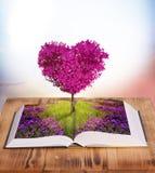 Magisk bok Arkivfoto