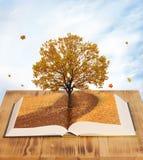 Magisk bok Arkivbilder