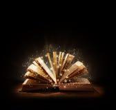 Magisk bok eller bibel Fotografering för Bildbyråer
