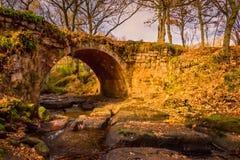 Magisk bro för höstlandskap i Aguilar de Campoo royaltyfria foton