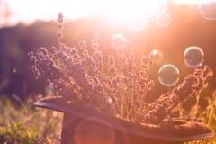 Magisk cylinderhatt, Royaltyfria Foton