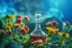 Magisk dryck i flaska i skog arkivfoto
