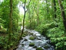 Magisk flod i Guapiles, Limà ³ n, Costa Rica Royaltyfria Bilder