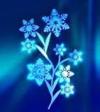Magisk isblomma med snöflingor i stället för sidor Arkivfoto