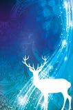 magisk jul Royaltyfri Bild