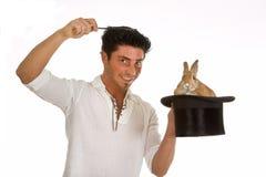 magisk kanin Arkivbilder
