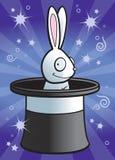 magisk kanin Royaltyfri Foto