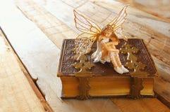 Magisk liten fe i skogen bredvid den gamla berättelseboken Arkivbild