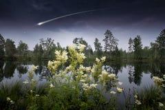 Magisk mörk planet Arkivfoto