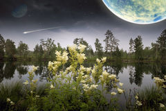 Magisk mörk planet Royaltyfria Bilder