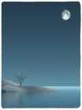 magisk natt Arkivfoton
