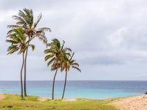 Magisk sikt från den Anakena stranden Arkivfoto