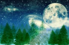 Magisk skog på nattbakgrund med träd över måne- och stjärnahimmel Royaltyfria Foton
