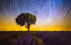 magisk sky Royaltyfria Foton