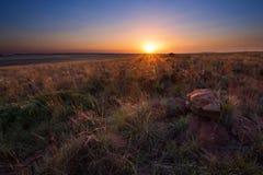 Magisk solnedgång i Afrika med ett ensamt träd på kullen och inga moln arkivfoton