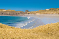 Magisk strand i norden av Skottland Royaltyfri Foto