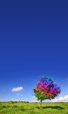 magisk tree Royaltyfria Foton