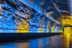 Magisk tunnel av Monaco Royaltyfri Fotografi