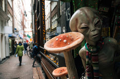 Magiska champinjoner i en Smart shoppar i det Amsterdam centret royaltyfri foto