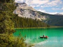 Magiska gröna färger av landskapet Arkivbilder
