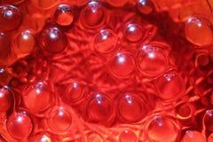 Magiska röda bubblor - som en ljus bakgrund royaltyfria bilder