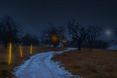 Magiskt nattland arkivfoto