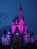 Magiskt slott på natten Royaltyfria Bilder