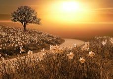 Magiskt springlike landskap Royaltyfri Foto