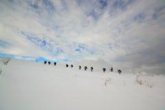 Magiskt vinterlandskap Dragobrat. Carpathians. Royaltyfria Foton
