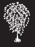 Magiskt vitt träd Arkivbild