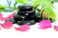 Maglia nera brillante di atteggiamento di zen dei ciottoli con le foglie del bambù, un fiore della rosa ed i petali Fotografie Stock Libere da Diritti
