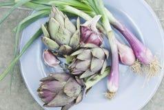 意大利、托斯卡纳、Magliano、朝鲜蓟和春天葱在板材 库存图片