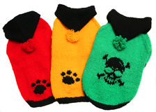 Maglioni di colore per i cani Fotografie Stock Libere da Diritti