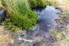 Magma congelé avec l'élevage de précipitation douce Image libre de droits