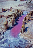 Magma de saumure rose de lac de sel avec la croûte sur une surface images libres de droits