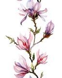 A magnólia cor-de-rosa floresce em um galho no fundo branco Teste padrão sem emenda Imagens de Stock Royalty Free