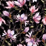 A magnólia cor-de-rosa floresce em um galho no fundo preto Teste padrão sem emenda Pintura da aguarela Mão desenhada Fotos de Stock Royalty Free