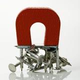 Magneet met spijkers. Stock Afbeelding