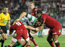 Magners Celtic League, Benetton vs Scarlets Royalty Free Stock Photos