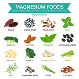 Magnesium foods, healthy food vector illustration Royalty Free Stock Images