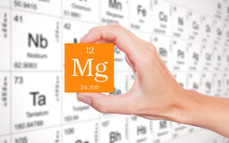 Magnesium from the periodic table. Magnesium symbol handheld in front of the periodic table stock photos