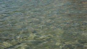 Magnesowa wyspa, podkowy zatoka zbiory