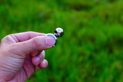 Magnesowy wiercipięta kądziołek obraz stock