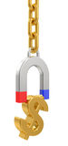 Magnet with chain and dollar signs Stock Photos