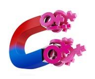 Magnet für Frauen Lizenzfreie Stockbilder